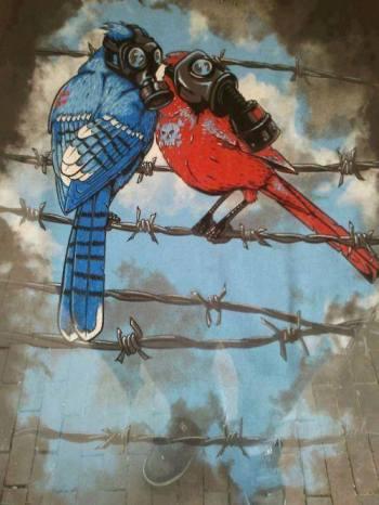 birds-on-wire-grafitti1.jpg
